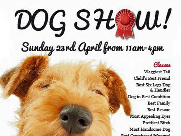 Peak Shopping Village Dog Show 2017