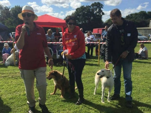 Fun Dog Show - Elvaston