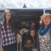 Sunday: Izzy Crew and family bringing two of their JFD rescue dogs to meet Tinks