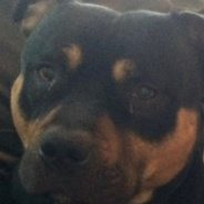 Winston's Story – we need your help!