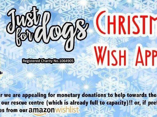 Christmas Wish Appeal