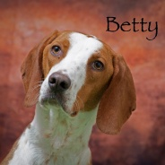 Betty  Copy